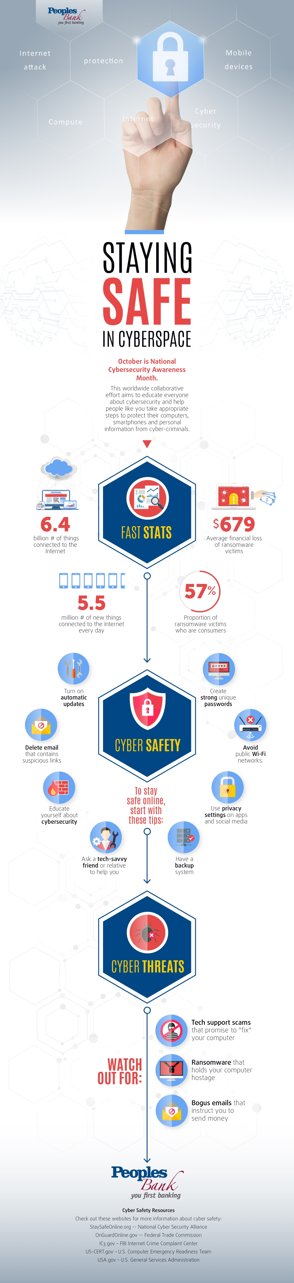 Staying_Safe_in_Cyberspace_Infographic-01