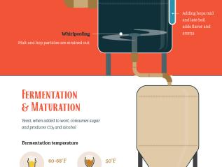 The Beer MakingProcess